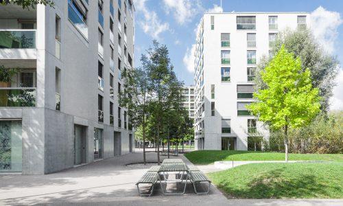 Wohnsiedlung Werdwies, Zürich