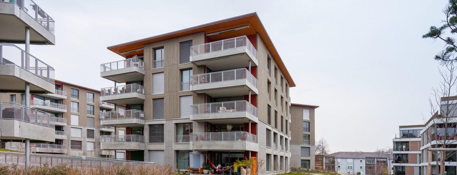 Ersatzneubau Wohnsiedlung Eyhof, Zürich
